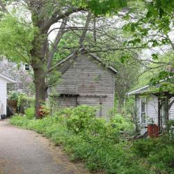 Oak St 300 barn a